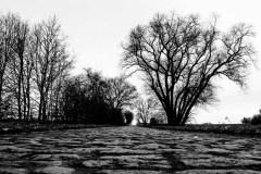 Passeggiata a Monstreux e dintorni